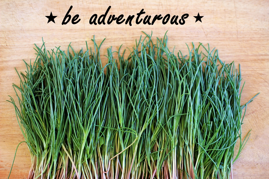 adventurous-agretti